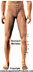 stomach meridian poses